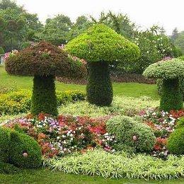 立体花坛蘑菇