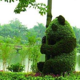 立体花坛熊猫