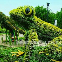 青蛙五色草立体花坛造型