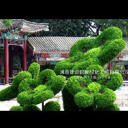 天津水上公园立体花坛