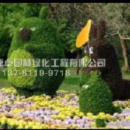 五色草造型龙猫