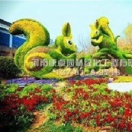 五色草造型松鼠