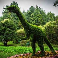 立体花坛恐龙造型