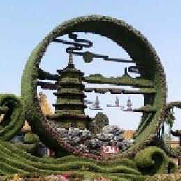 河北晋州立体花坛