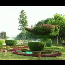 绿雕流水茶壶