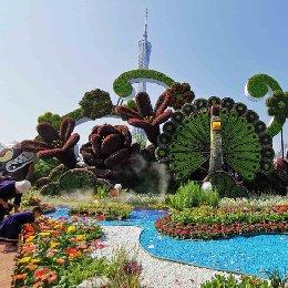 第26届广州园林博览会