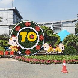 郑州民运会大环境绿雕造型