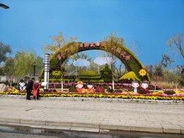 开封第三十六届菊花文化节城市五色草造