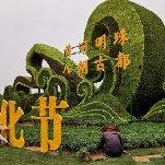 2020中国开封第三十八届菊花文化节龙亭广